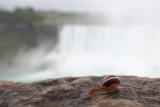 Niagara_Falls_4_Origwk_MG_1170.jpg