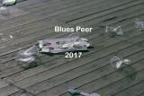 Canned Heat - Blues Peer 2017