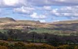 TAVY CLEAVE - Dartmoor
