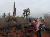 The tour at Punta Estrada next to Divine Bay on Santa Cruz Island