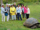 Posing with a Giant Galapagos Tortoise