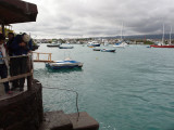 Photographing the crabs, Puerto Ayora, The Galapagos