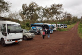 Tourist buses at the tortoise conservation area, Galapagos Islands