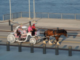 Carriage ride on the Mississippi waterfront in St. Louis