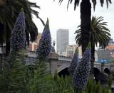 Melbourne sights