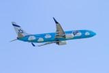 B737-800 winglets