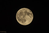 Full Moon  2018  1