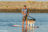 Stand UP Paddle Board  17