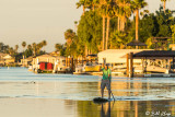 Stand UP Paddle Board  19