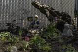 The S.W. Corner of Cindy's Garden