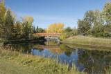 Walking Bridge at Bower Ponds