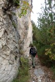 Along a rock face
