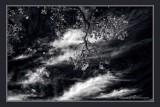 DSCF9102_ir_m.jpg