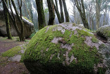 Sintra's Mountain