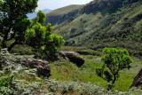 Drakensberg Mountains, Giant's Castle Trail