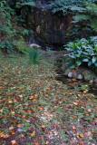 Monserrate Palace Garden