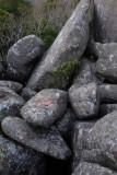Rock formation at Pena Palace garden