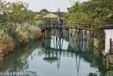 Wuzhen 8