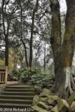 Zhongqing Residence of Chiang Kai-Shek 3