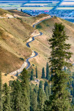 Nalati Grassland 2