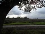 09_ws1-waalwijk.jpg