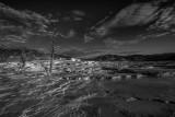 Mammoth Springs, Yellowstone _MG_4532.jpg