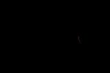 20170821D500-KT5_7485.jpg