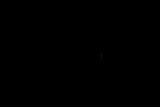 20170821D500-KT5_7486.jpg