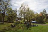 Stuyvesant High School - XC Section 1 Coaches Invitational Bowdoin Park 2016-10-21