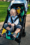 Stroller And Soother