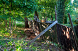 Wooden Fence In The Woods