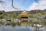 Golden temple 1