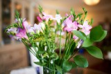 Flowers @f1.4 D800E