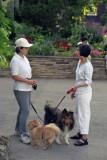Dog talk Reala