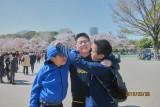 Kids with sakura in Ueno