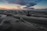 1450-Coastguard beach 5-08-2017 1936--5.jpg
