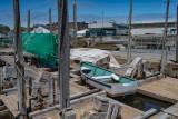 1450-Cape Anne 5-11-2017-2 2246--13.jpg