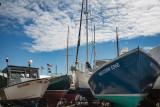 1450-Cape Anne 5-11-2017-2 2282--17.jpg