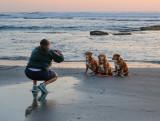 Canine Photo Shoot