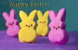 Happy Easter Peeps