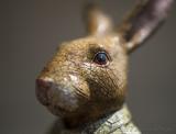 Glaze of the Hare