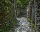 Trail in Monterosso