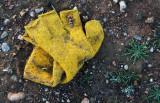 Mitón amarillo