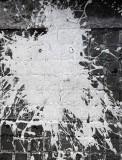 El Monstruo de Pollock