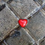Corazón y sus arterias