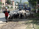 Amritsar, India plus Kashmir