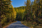 2017 Fall at Whitefish River and Hungry Horse Reservoir