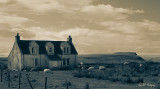 Desolate farm.jpg