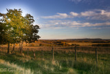 Ft Fraser Farm