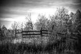 Ft. Fraser Farm BW